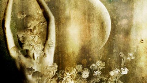moon_dancer_01_by_moonywolf